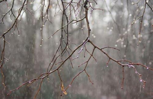 Погода в тазовский гисметео