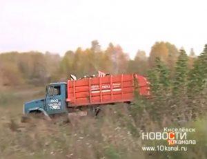 Киселёвск4 300x230 Что происходит с экологией в Киселёвске?