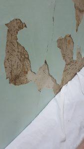 uU7wxYysaHg 1 169x300 «О самой лучшей медицине в мире»: новокузнечанин поделился впечатлениями о больнице