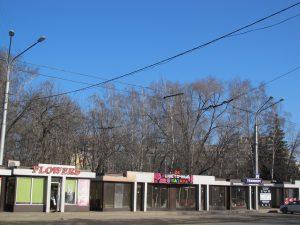 IMG 5341 300x225 Малый бизнес Новокузнецка взывает о помощи