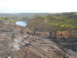 ананьино 300x225 Замдиректора разреза наказали за вырубленный лес