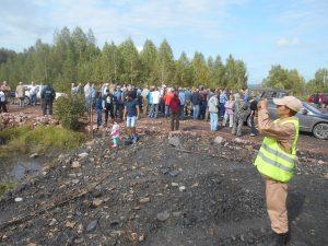 ананьино 4 300x225 Замдиректора разреза наказали за вырубленный лес