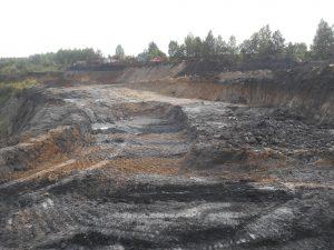 ананьино3 300x225 Замдиректора разреза наказали за вырубленный лес